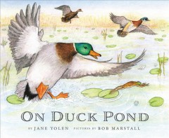 On Duck Pond - Jane Yolen