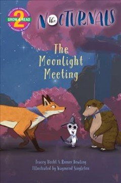 The moonlight meeting - Tracey Hecht