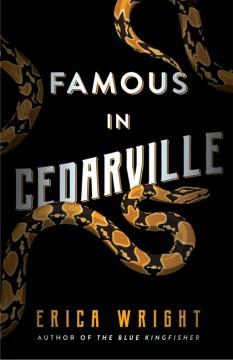 Famous in Cedarville - Erica Wright