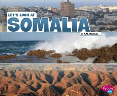 Let's look at Somalia - A. M Reynolds
