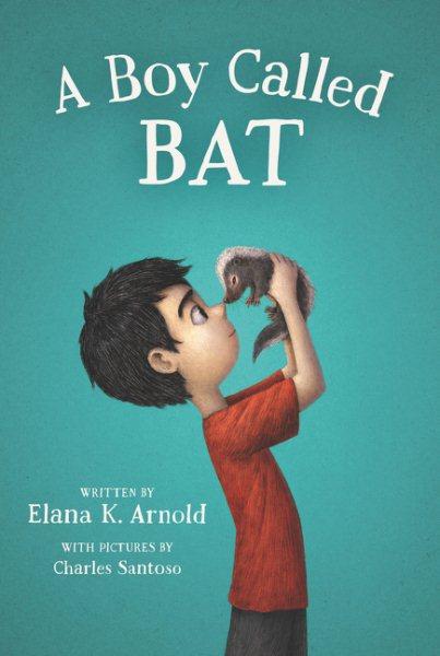 Cover: 'A Boy Called Bat'