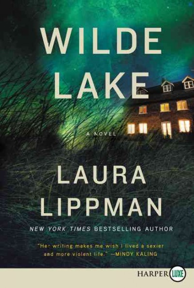 Cover: 'Wilde Lake'