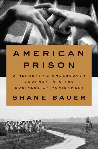 Cover: 'American Prison'