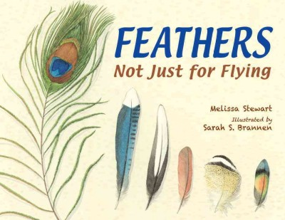 Cover: 'Feathers: Not Just For Flying'