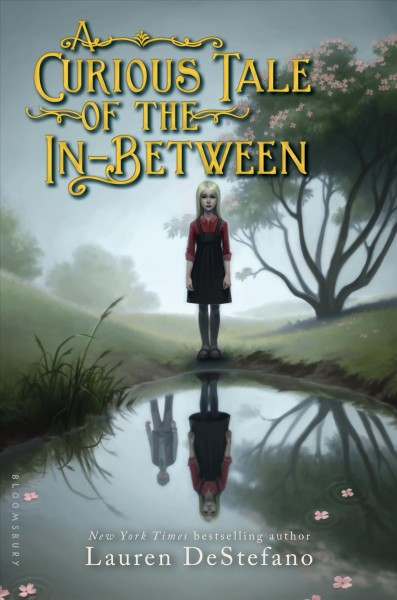 Cover: 'A Curious Tale of the In-Between'