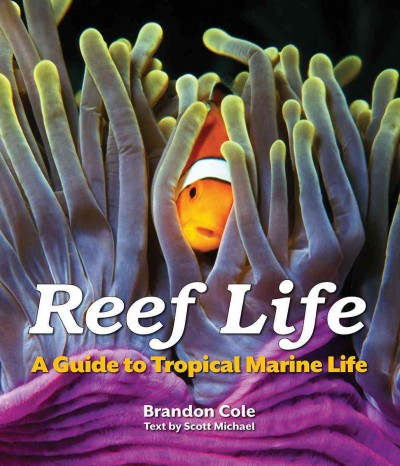 Cover: 'Reef Life: A Guide to Tropical Marine Life'