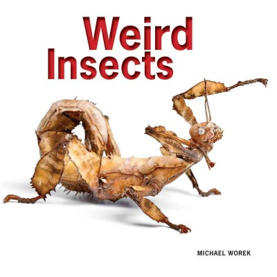 Cover: 'Weird Insects '