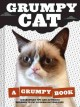 Product Grumpy Cat