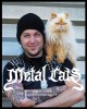 Product Metal Cats