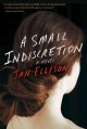 A Small Indiscretion by Jon Ellison