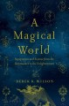 A MAGICAL WORLD : SUPERSTITION AND SCIENCE FROM THE RENAISSANCE TO THE ENLIGHTENMENT