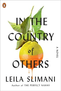 In the Country of Others - Leila Slimani