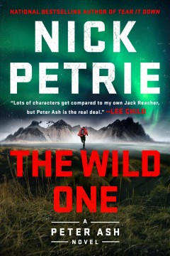 The Wild One - Nick Petrie