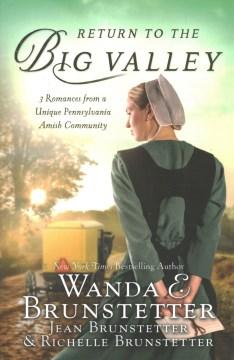 Return To The Big Valley - Wanda Brunsetter