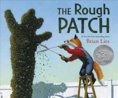 Bookjacket for The Rough patch