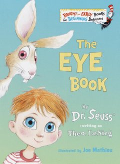 Bookjacket for The eye book