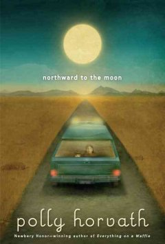 Bookjacket for  Northward to the Moon