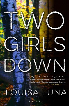 Bookjacket for  Two girls down