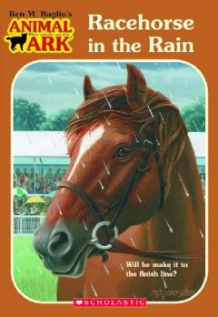 Bookjacket for  Racehorse in the rain
