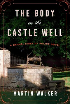 Bookjacket for The body in the castle well
