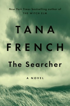 Bookjacket for The searcher