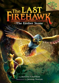 Bookjacket for The ember stone