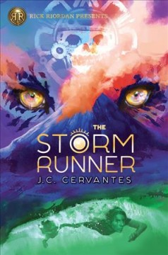 Bookjacket for The Storm runner