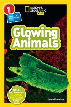 Bookjacket for  Glowing animals