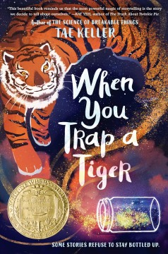 Bookjacket for  When you trap a tiger