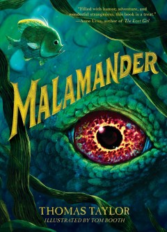 Bookjacket for  Malamander