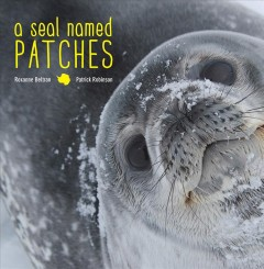 Bookjacket for A seal named Patches