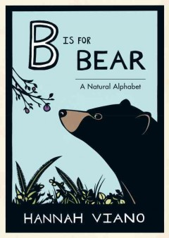 Bookjacket for  B is for bear
