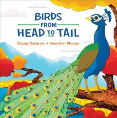 Bookjacket for  Birds from Head to Tail