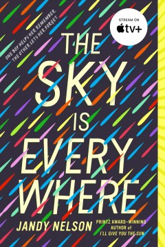 Bookjacket for The Sky Is Everywhere