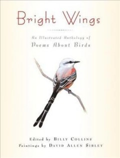 Bookjacket for  Bright wings