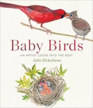 Baby Birds An Artist Looks into the Nest
