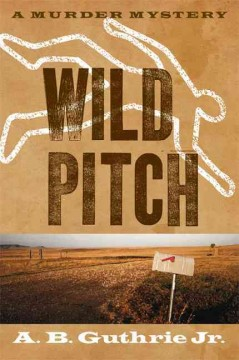 Bookjacket for  Wild pitch