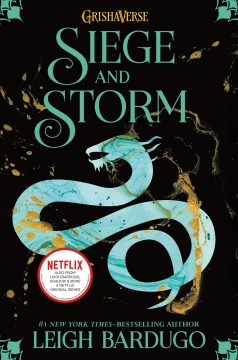 Bookjacket for  Siege and Storm