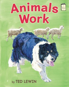 Bookjacket for  Animals work
