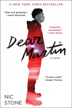 Bookjacket for  Dear Martin