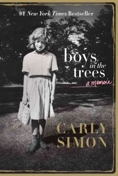 Bookjacket for  Boys in the trees