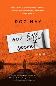 Our Little Secret A Novel