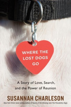 Where the Lost Dogs Go A Story of Love, Search, and the Power of Reunion