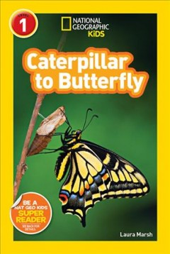 Bookjacket for  Caterpillar to butterfly