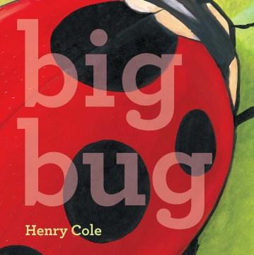 Bookjacket for  Big Bug