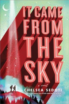 Bookjacket for  It Came From the Sky