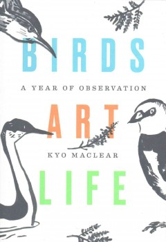 Birds Art Life A Year of Observation