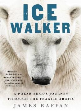 Ice Walker A Polar Bear's Journey through the Fragile Arctic