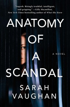 Bookjacket for  Anatomy of a Scandal