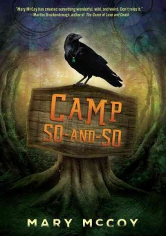 bookjacket for Camp So-and-So